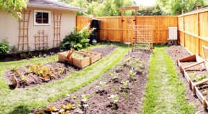 Gardening and Food Safety
